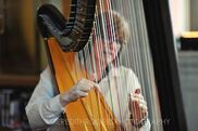 South Bend, IN Harp | Beth Paré, Harpist