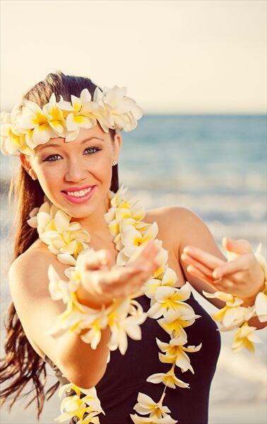 Hawaii Hula Company