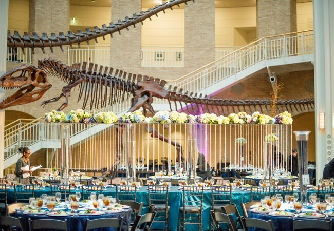 Places To Have A Wedding.8 Crazy Cool Places You Can Actually Get Married