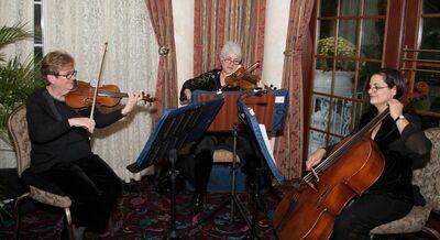 Showcase Strings