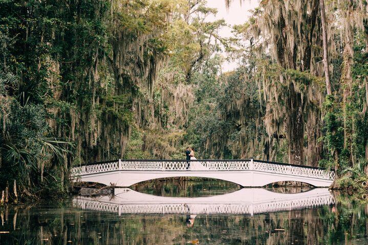 Magnolia Plantation And Gardens Charleston Sc