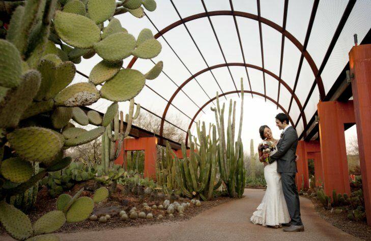 Bride and groom at the Desert Botanical Garden in Phoenix, Arizona