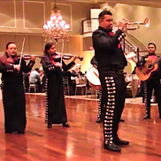 Bolingbrook, IL Mariachi Band | Valdes Music Productions