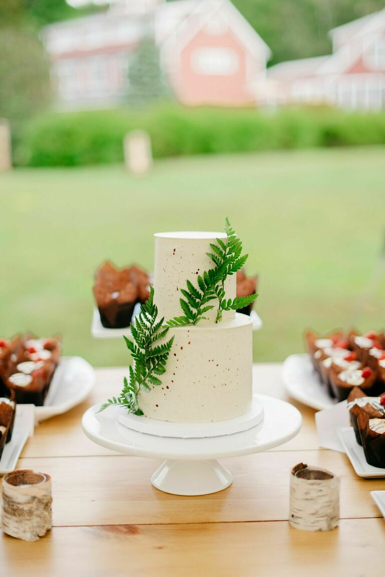 Two-tier wedding cake with fern decorations