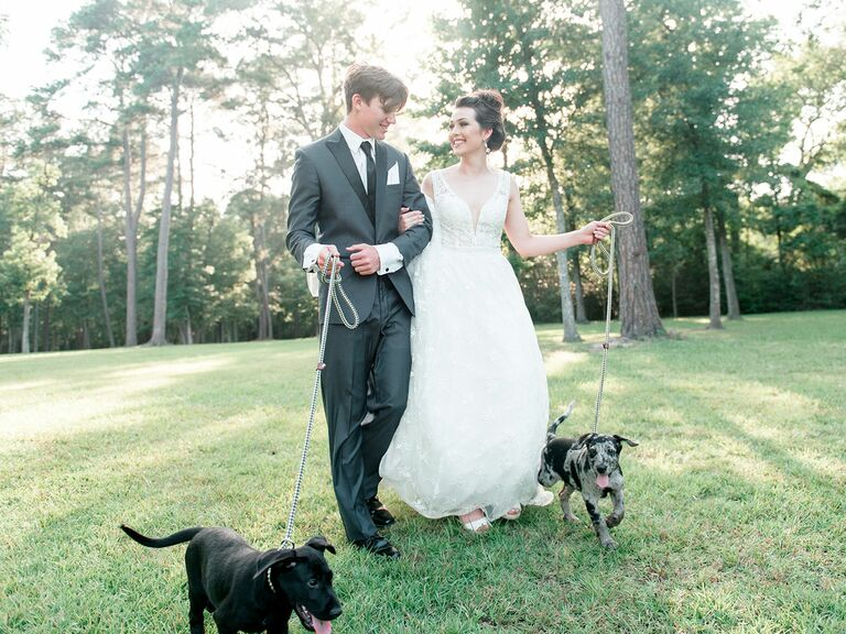 Bride and groom holding puppies on leash