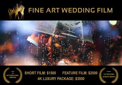 Fine Art Wedding Film