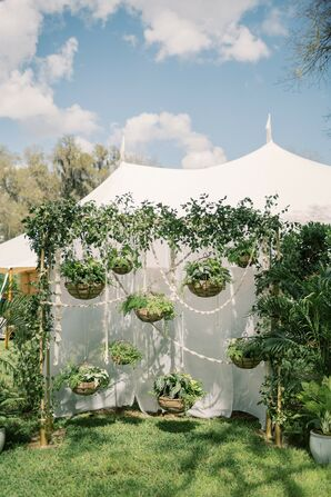 Whimsical Hanging Greenery and Basket Décor