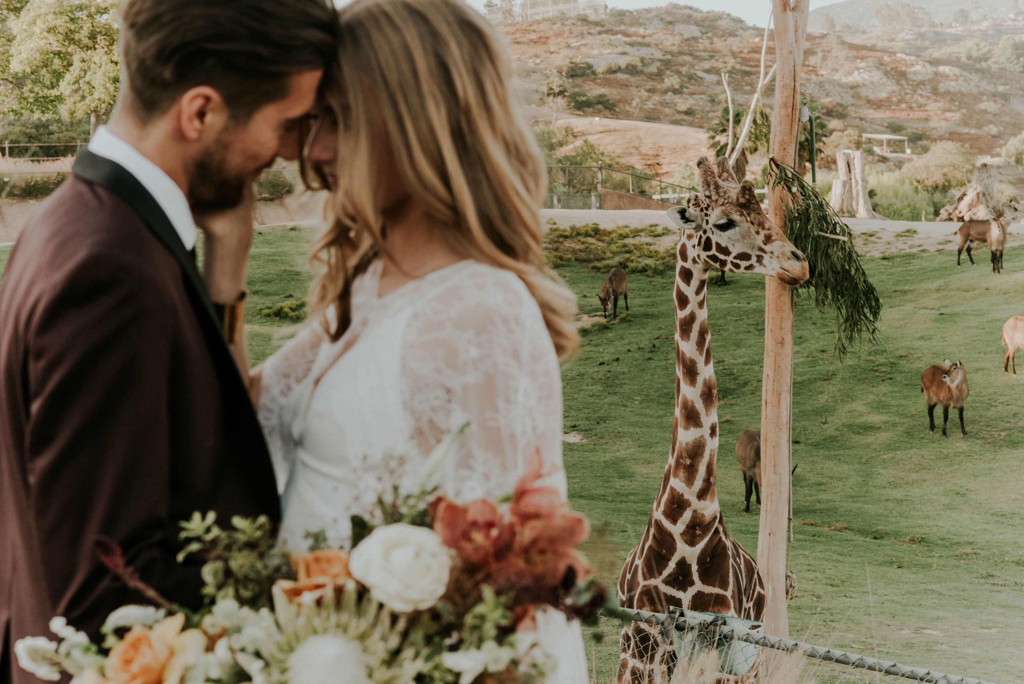 Wedding Reception Venues In Julian Ca The Knot