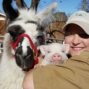 Levelland, TX Petting Zoo | Whitley Acres Exotic Ranch & Stables