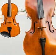 Saint Petersburg, FL String Quartet | Sunset Strings - Duo, Trio, or Quartet