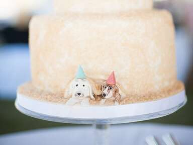 Two tier wedding cake with pet dog