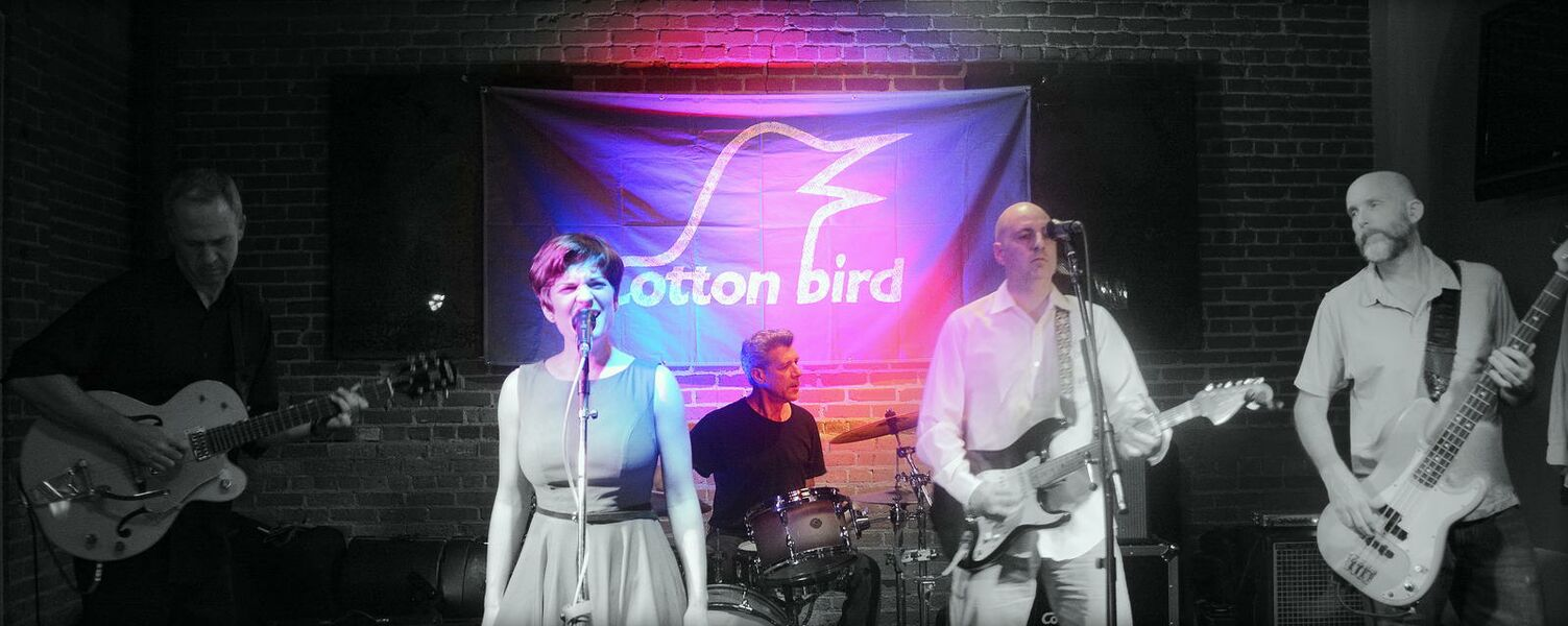 Cotton Bird - Cover Band - Clanton, AL