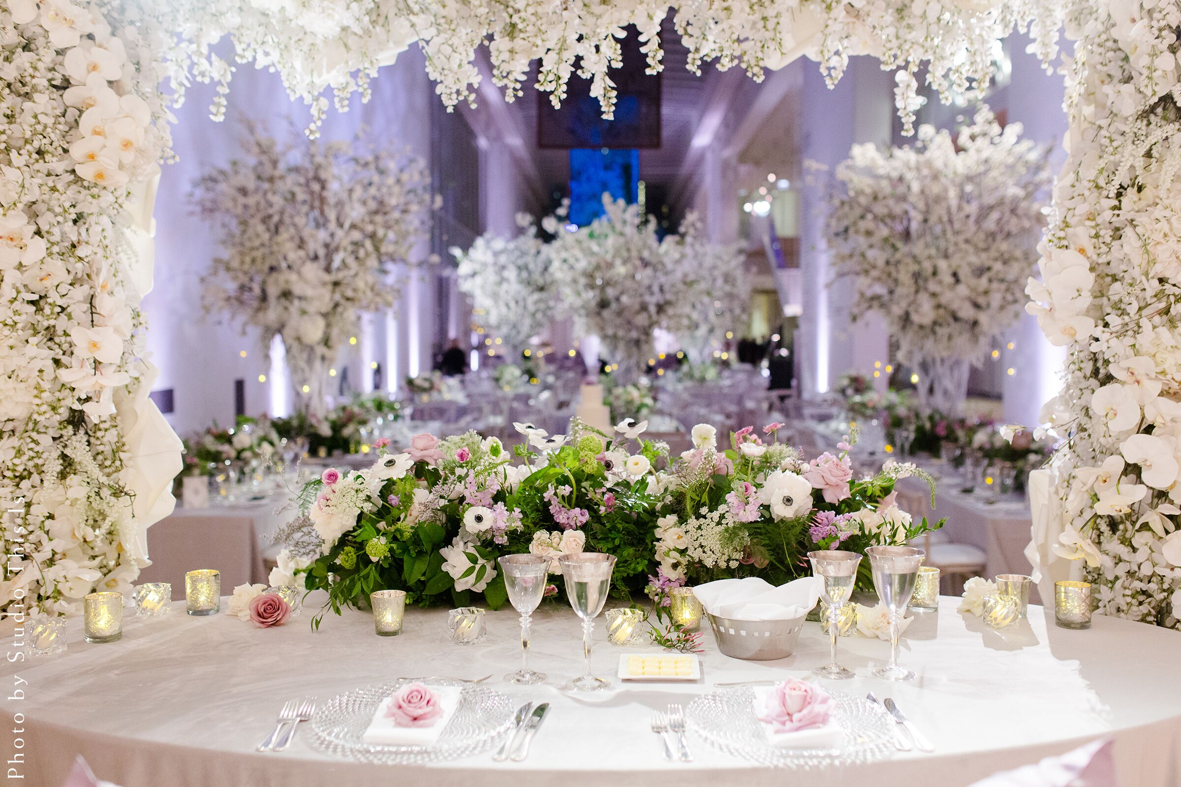 Florists In Chicago Download Wallpaper