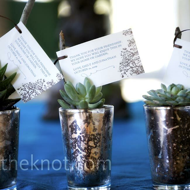 Guests went home with mercury glass votives filled with succulents to plant in their own gardens.