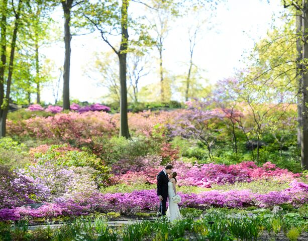 bronx botanical garden wedding. Gallery Bronx Botanical Garden Wedding B