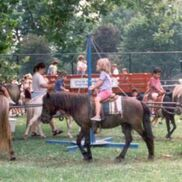 New York City, NY Pony Rides | Event Staff Magic NYC