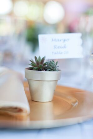 Gold Potted Succulent Favors