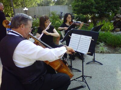 Chamber Music Unlimited
