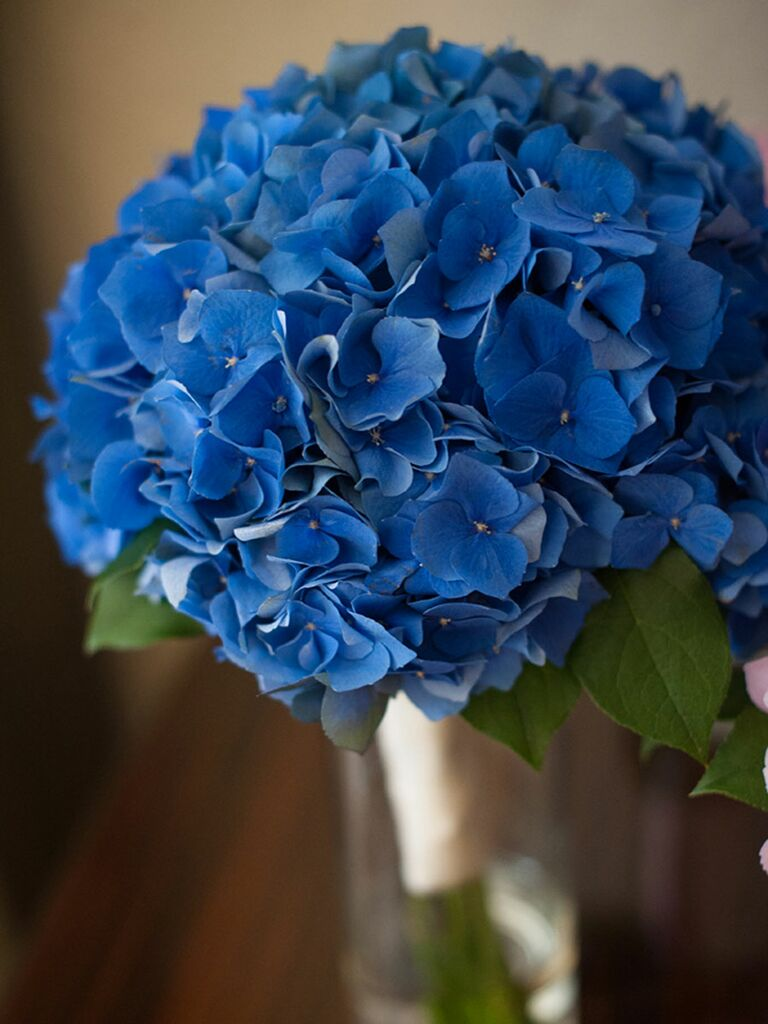 Blue wedding bouquet of hydrangea
