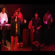 Seattle, WA Latin Band | Salsariba