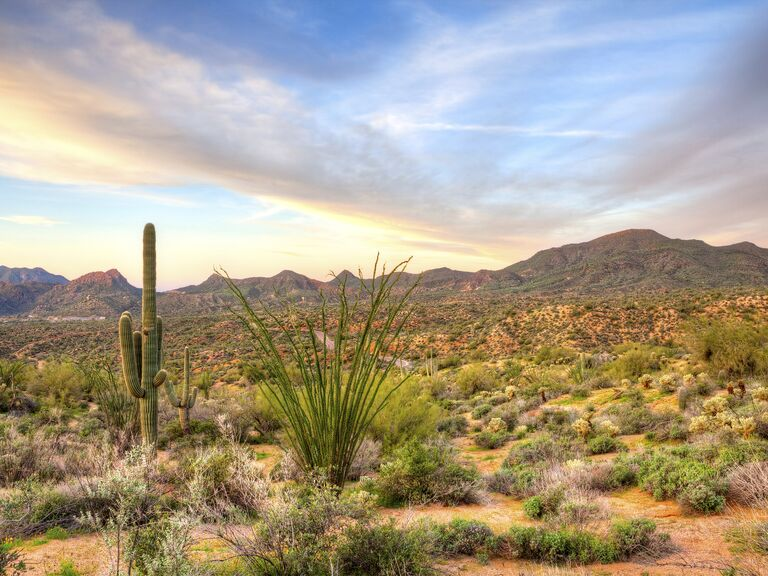 Carefree Arizona honeymoon destination