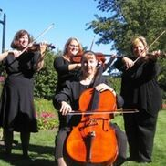 Walled Lake, MI String Quartet | Rondo String Quartet