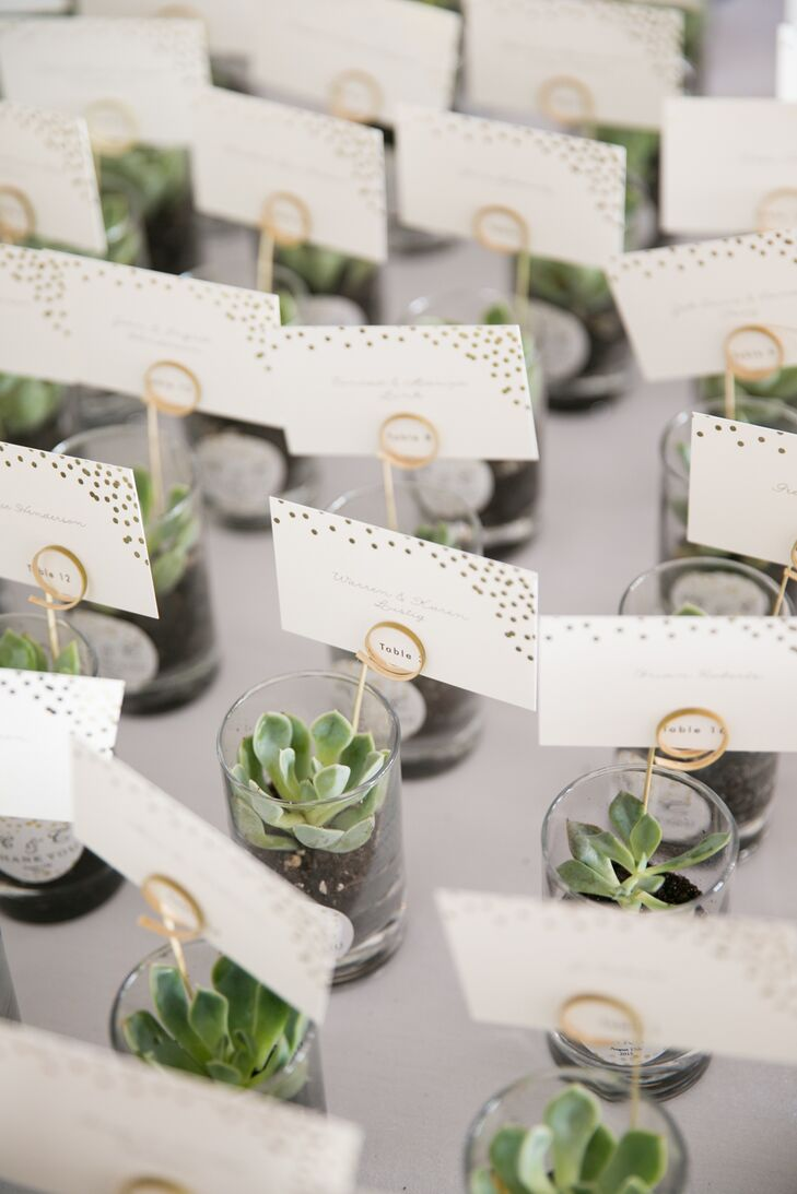 Potted Succulent Table Assignments And Favors