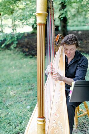 Harpist for Wedding at the University of Illinois