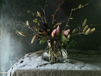 Foliage Flower & Plant Shop