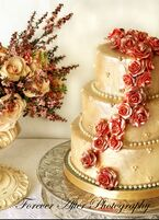 Wedding cake bakeries in evergreen co the knot azucar bakery sciox Gallery