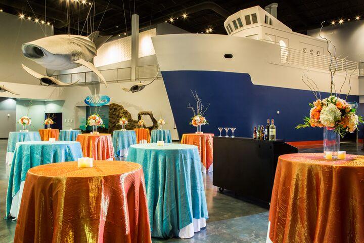 Loveland Living Planet Aquarium | Reception Venues ...