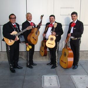 San Jose, CA Latin Band | LOS DOMINOS/ mini mariachi