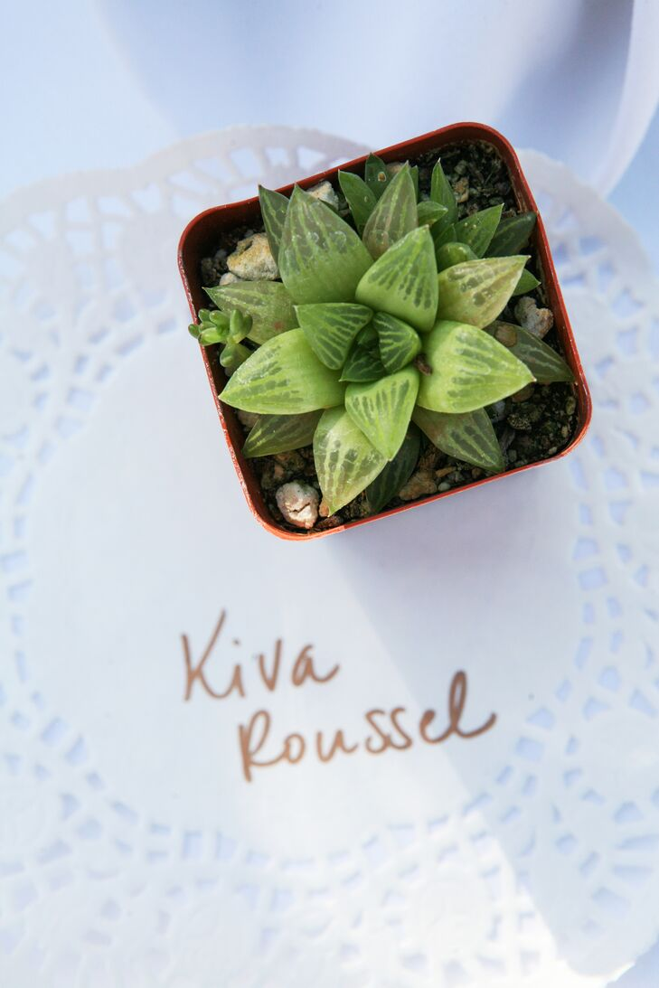 The couple used miniature succulent potted plants as escort cards. The plants, grown locally in Leucadia, California, doubled as take-home favors for guests.