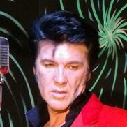 Schenectady, NY Elvis Impersonator | Bill McGrath
