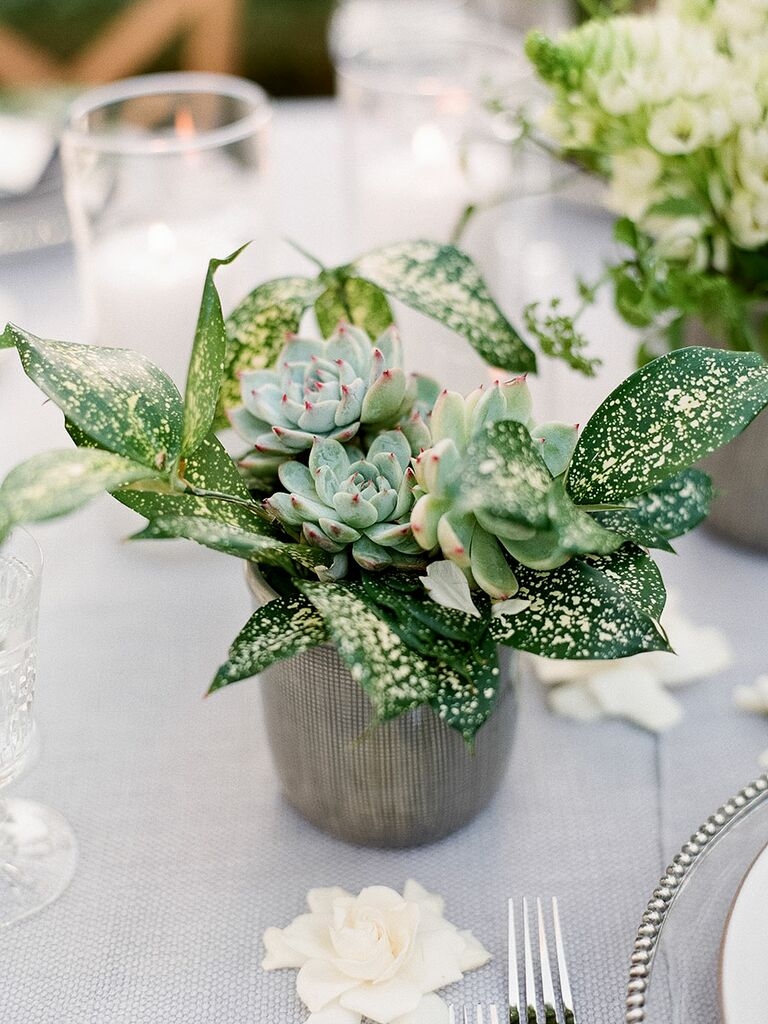 Succulent Centerpiece Ideas