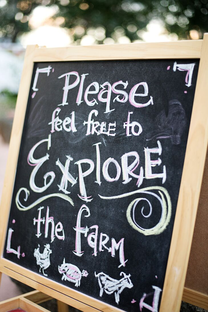 Wedding guests were welcome to explore the farm grounds at the Frog Belly Farm throughout the day.