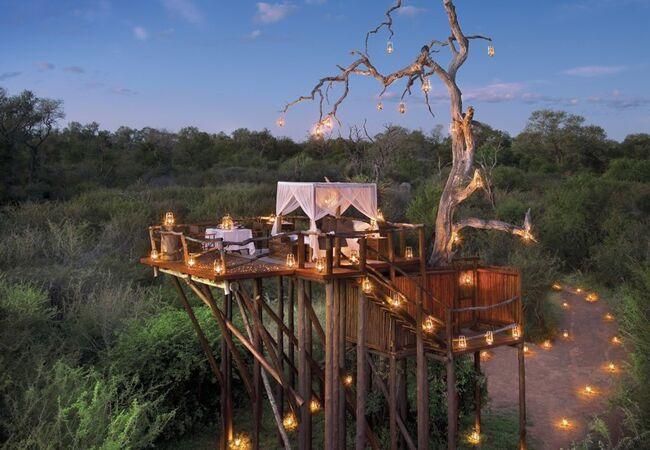 5 Dream Tree House Honeymoons
