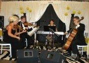 Forte Strings Chattanooga