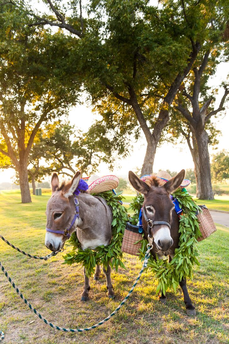 "What would a Southwestern-themed wedding be without donkeys? ""We had beer donkeys, which were such an awesome touch. They carried around beers for people to take after the ceremony,"" Ferrell says."