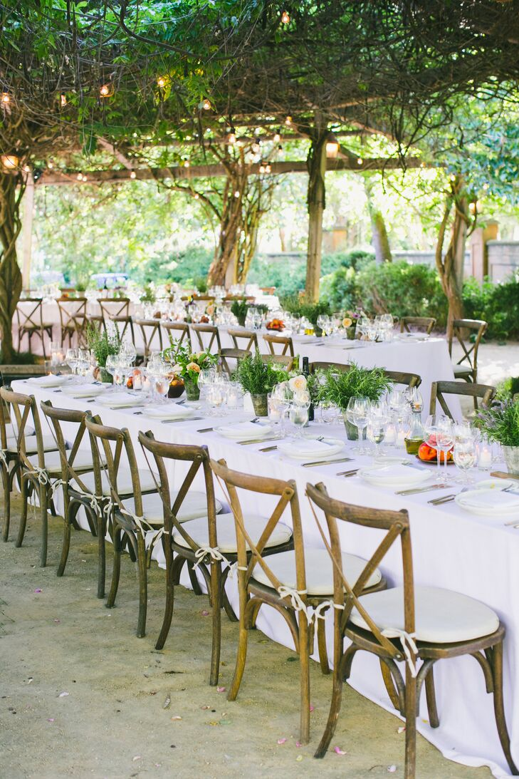 Romantic Reception Under Trees with String Lights