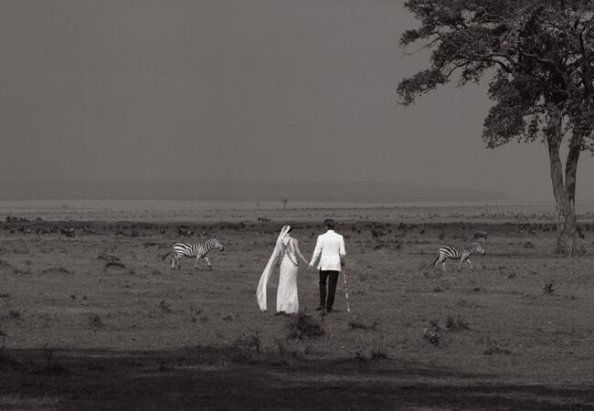 bride-groom-zebras-wedding-photo