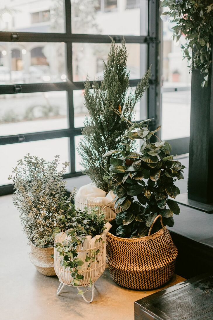 Modern Plant Decorations in Mismatched Baskets