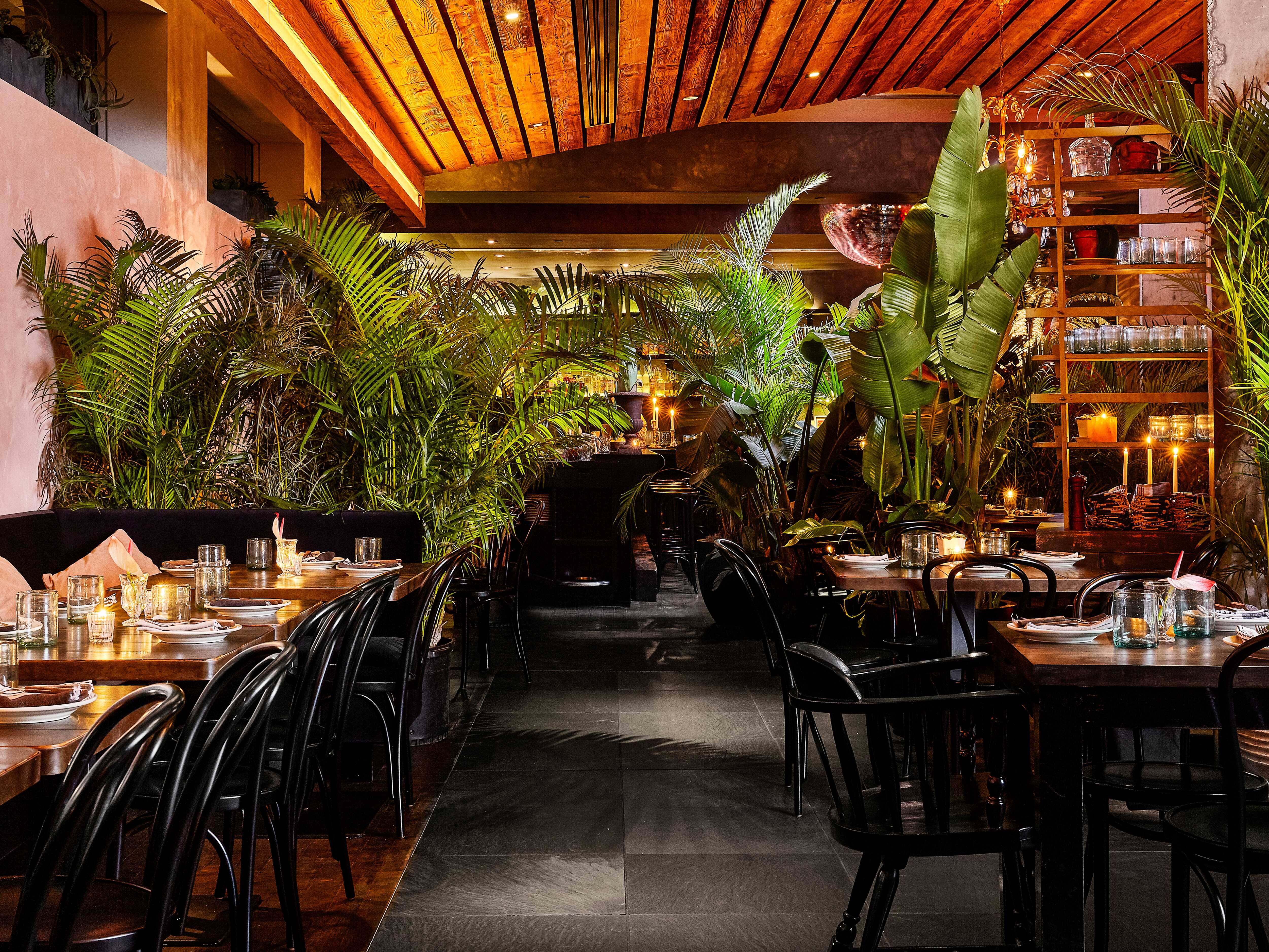 Tables and chairs inside GITANO with greenery surrounding interior