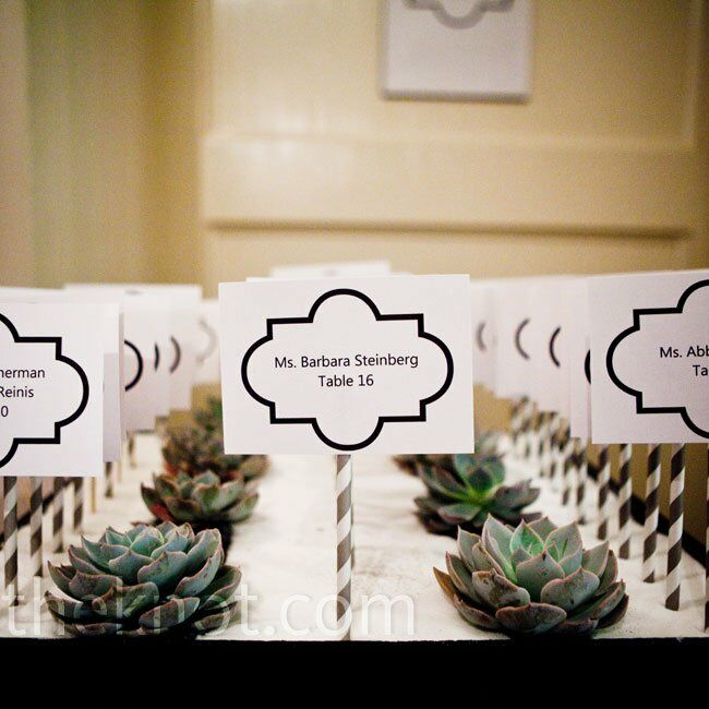 The cards were attached to striped straws and lined up with rows of succulents in black wooden boxes filled with white sand.