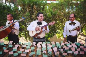Cocktail Hour Mariachi Band