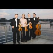Brooklyn, NY String Quartet | Harmonia Strings
