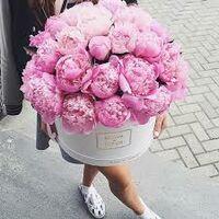 peony_rose