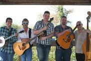 Hollywood, FL Bluegrass Band | Alligator Alley