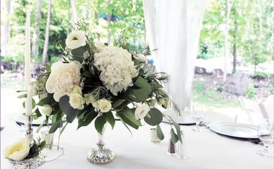 Claudia O'Hara Weddings & Events Florist