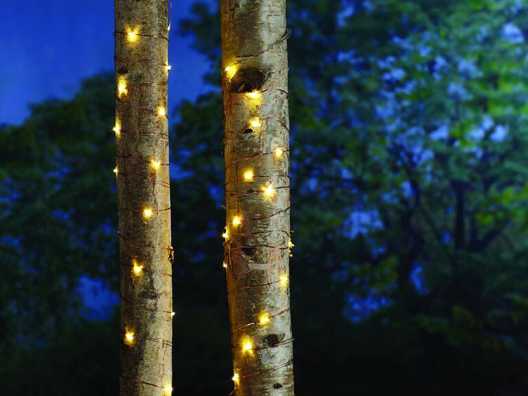 Backyard wedding ideas fairy string lights